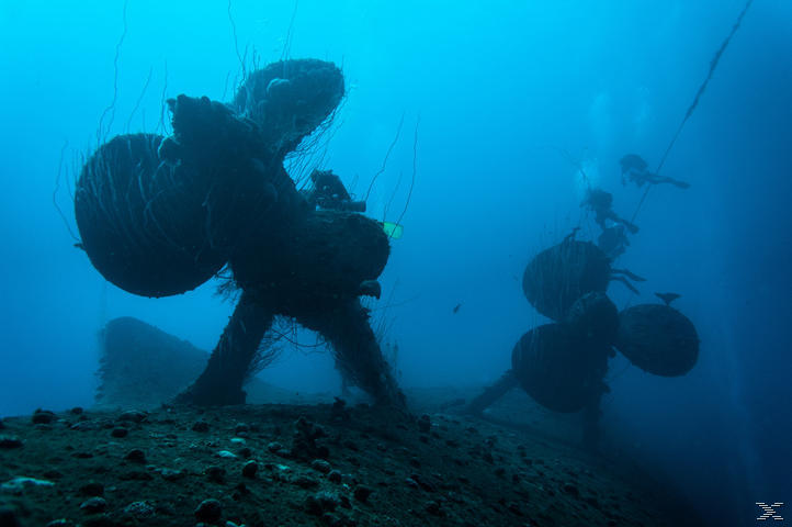 Die Südsee 3D - Bikini Atoll und Marshallinseln [3D Blu-ray]