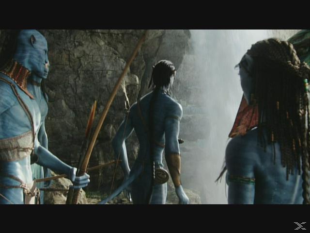Avatar - Aufbruch nach Pandora - (DVD)