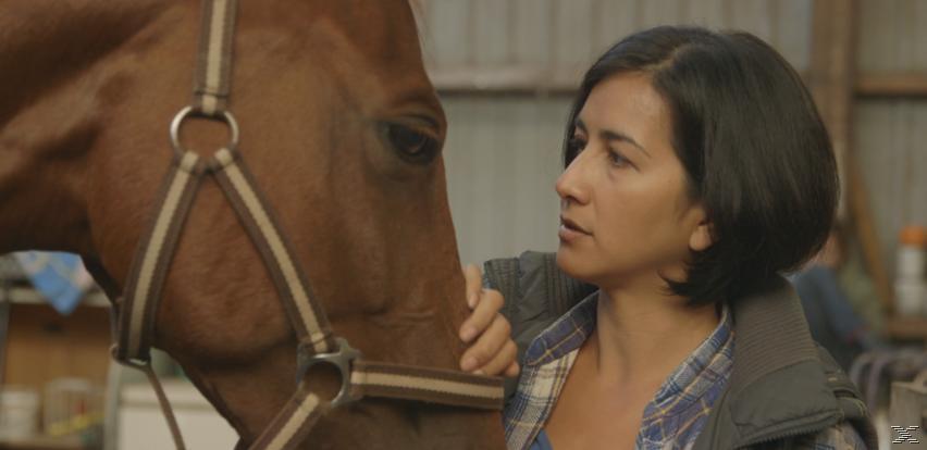 Von Maedchen Und Pferden [DVD]