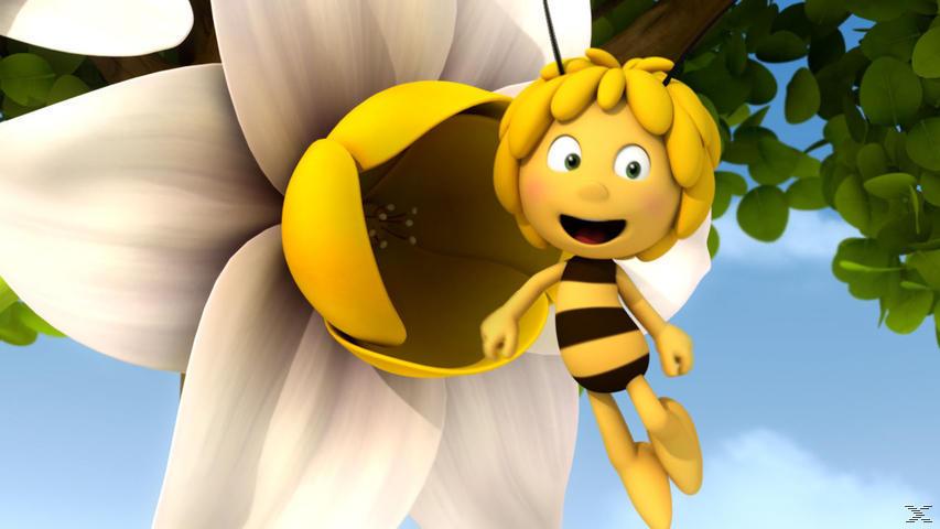Die Biene Maja 3D - DVD 11 - (DVD)