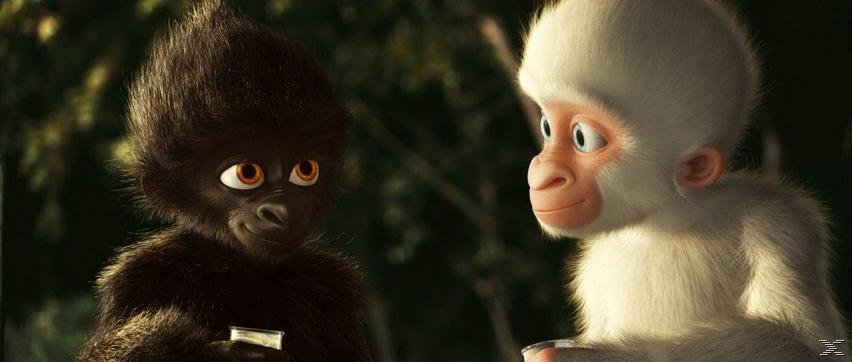 Flöckchen - Die großen Abenteuer des kleinen weißen Gorillas - (DVD)