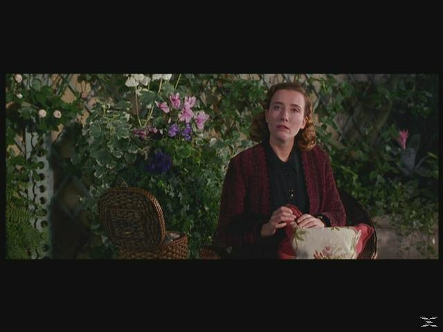 Zeit der Unschuld / Was vom Tage übrigblieb (Best Of Hollywood) - (DVD)