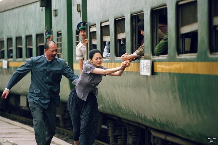 Die Töchter des chinesischen Gärtners - (DVD)