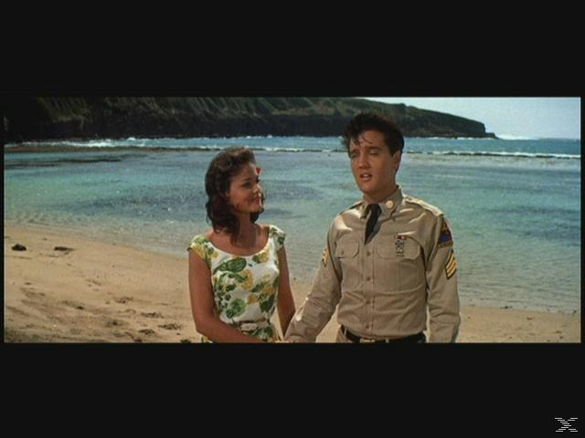 Blaues Hawaii [DVD]