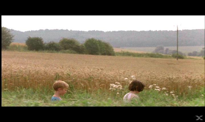 Milchwald - (DVD)
