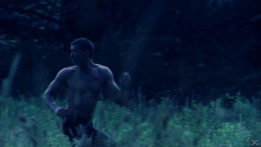 Manhunter - Traue niemals einem Fremden - (DVD)