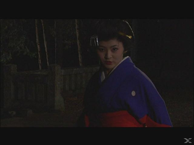 Geisha vs. Ninja [DVD]