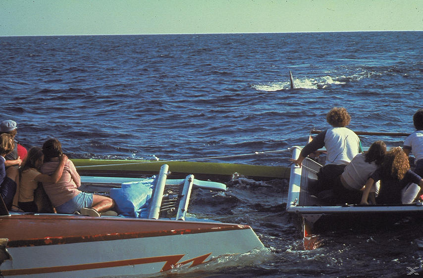 Der weisse Hai 2 - (Blu-ray)