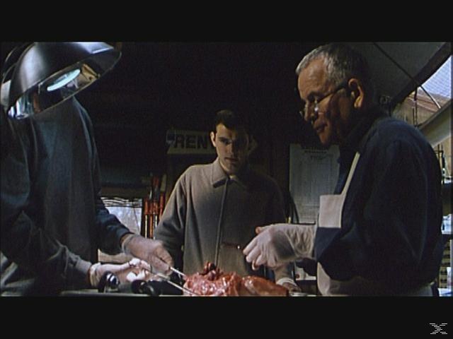 EXISTENZ (MEDIABOOK + DVD - LIM ED 2000 STÜCK) - (Blu-ray + DVD)