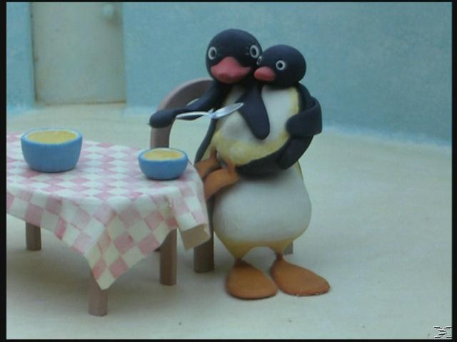 Pingu - Die gesamte Welt des kleinen Pinguins (Staffel 1-6) - (DVD)