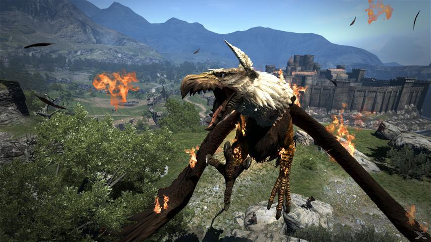 Dragon's Dogma: Dark Arisen [PC]