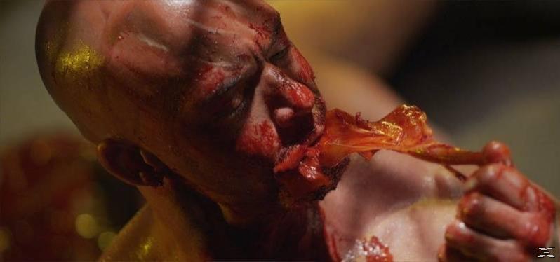 Evil Feed - (Blu-ray)