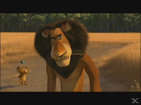 Madagascar 1 t/m 3 | DVD
