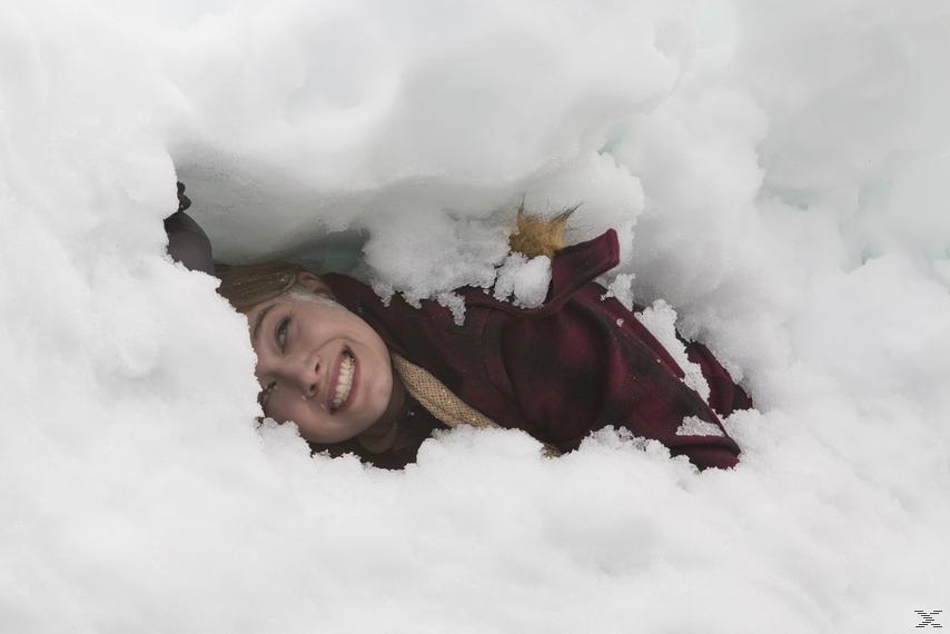 Eissturm aus dem All - (DVD)