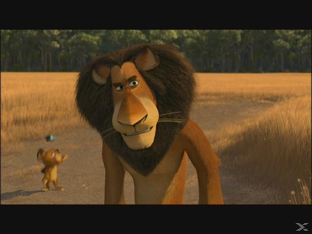 Madagascar 2 Abenteuer Blu-ray