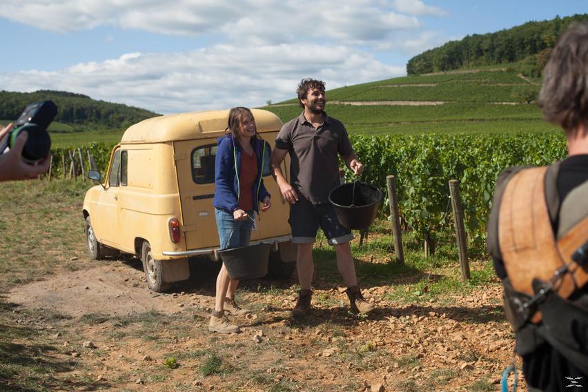 Der Wein und der Wind - (DVD)