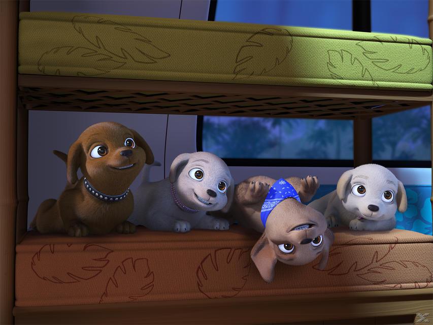 Barbie und ihre Schwestern - die Hundesuche [Blu-ray]