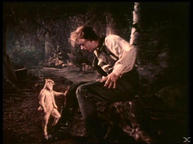 Die Welt der Märchen - Das kalte Herz [DVD]