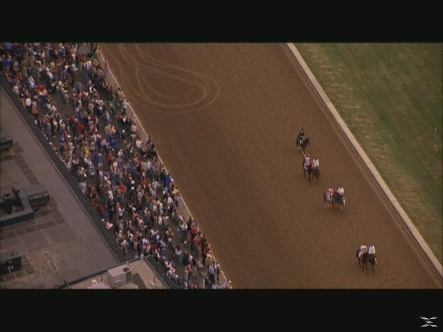3 Pferde mit dem Willen zu siegen - (DVD)
