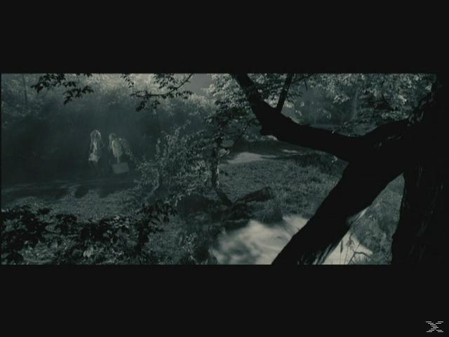 DER WIXXER (DEUSCHLAND LACHT) - (DVD)