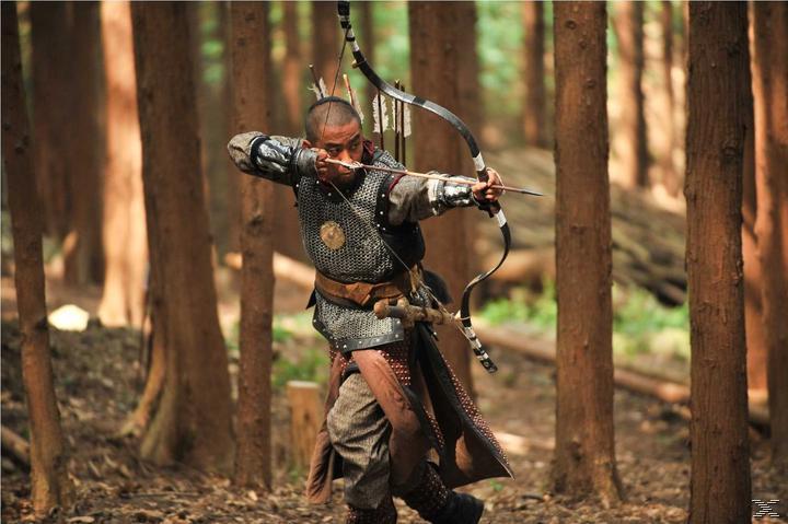 War of the Arrows - (DVD)