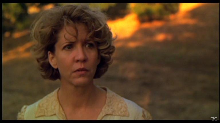 Kinder des Zorns 6 - Isaacs Rückkehr - (DVD)