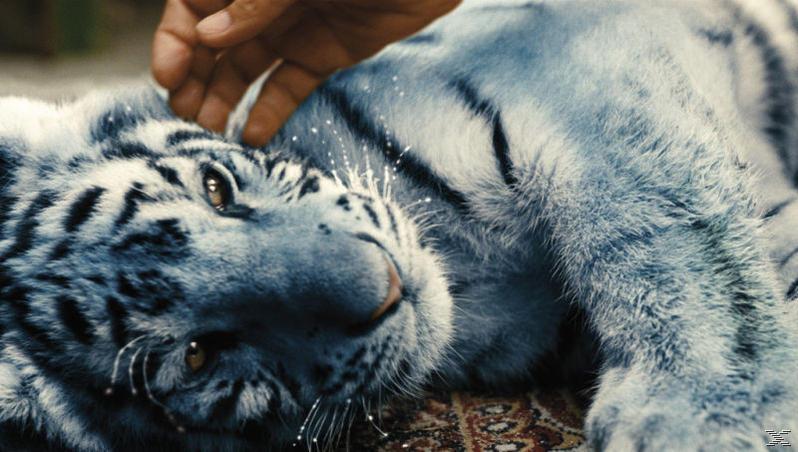 Der blaue Tiger - (Blu-ray)