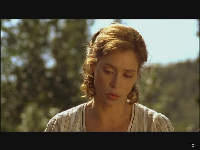Im Tal der wilden Rosen 2 - (DVD)