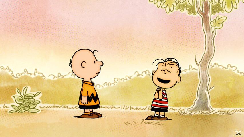 Peanuts - Die neue Serie Vol. 4 [Blu-ray]