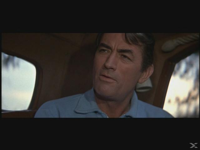 Gregory Peck Collection (Wer die Nachtigall stört / Arabeske / MacArthur) [DVD]