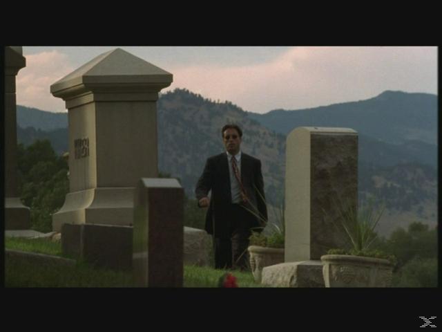 Das Leben nach dem Tod in Denver - (DVD)