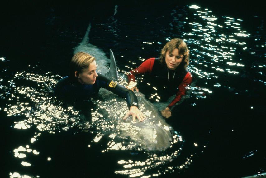 Der weiße Hai 3 [Blu-ray]