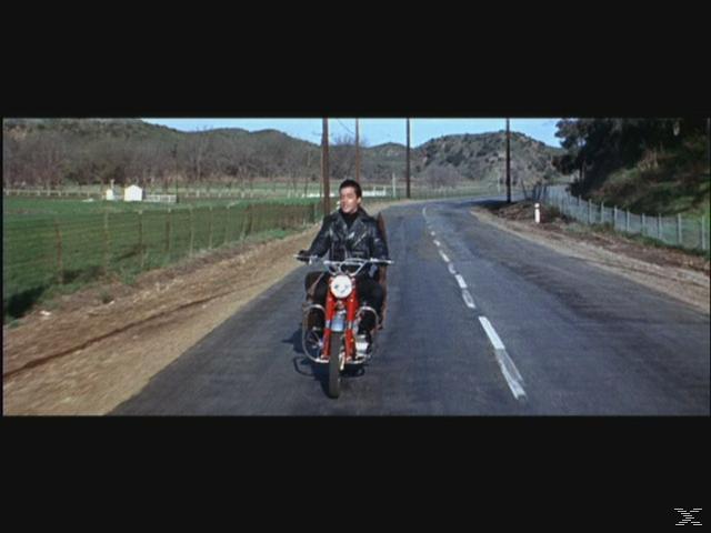Elvis - König der heissen Rhythmen [DVD]