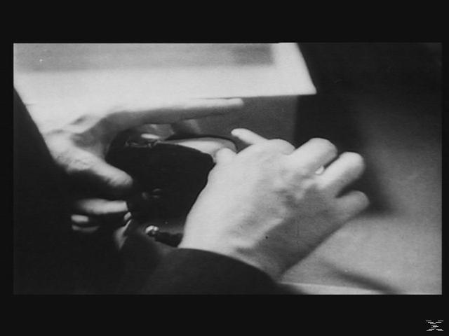 Die sieben Raben [DVD]