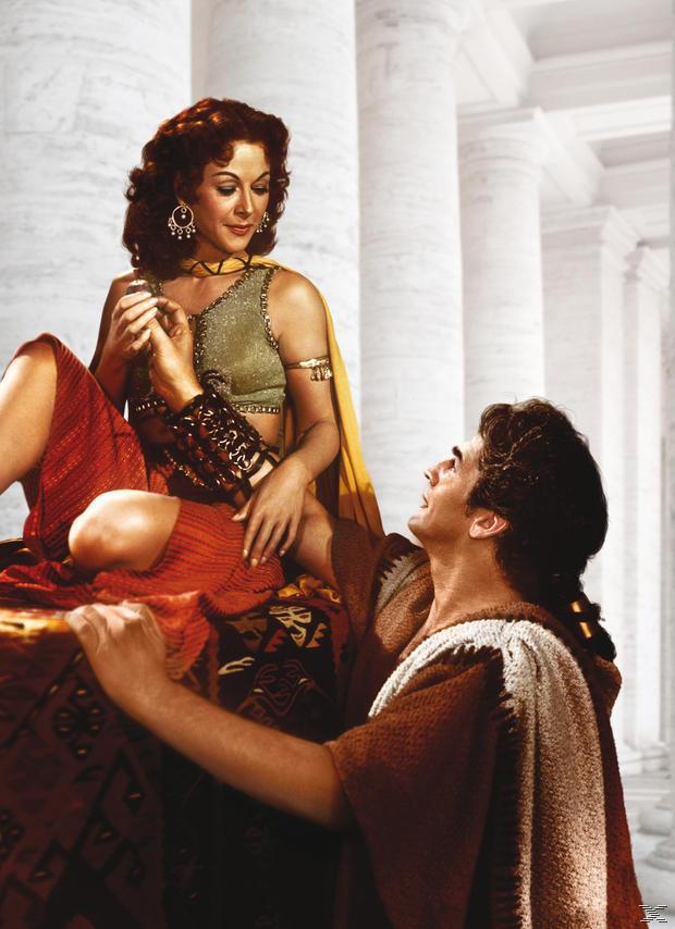 Samson und Delilah [DVD]