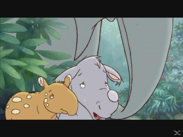 Kleiner Dodo: Dschungel-Abenteuer 2 + Jackenreflektor [DVD]