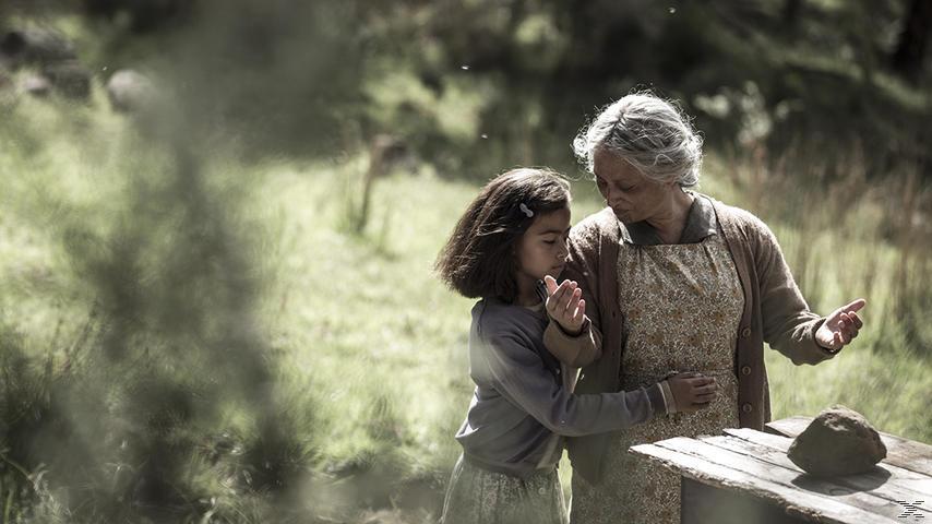 Mahana - Eine Maori-Saga - (DVD)