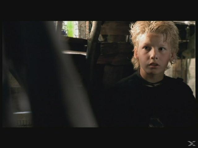 Die wilden Kerle - Der Film [DVD]