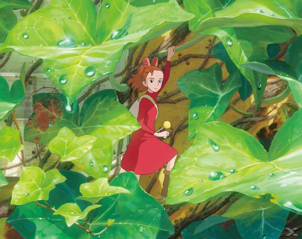 Arrietty - Die wundersame Welt der Borger - (DVD)