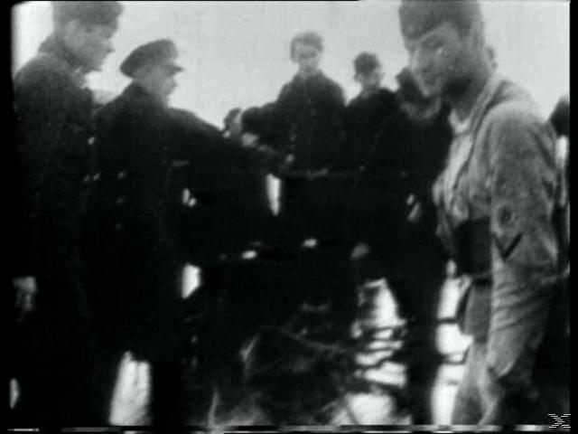Klassiker der Zeitgeschichte: Alliierte Kriegsverbrechen - (DVD)