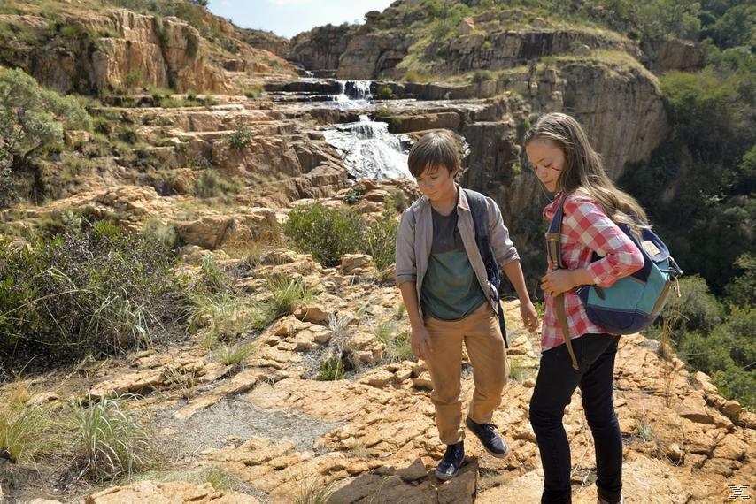 Kleine Helden,Große Wildnis 2-Abenteuer Serengeti - (Blu-ray)