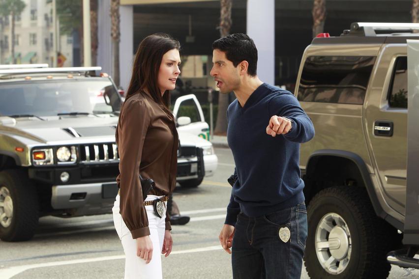CSI: Miami - Staffel 10.2 (finale Staffel) - (DVD)