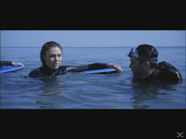 The Reef - Schwimm um dein Leben - (DVD)