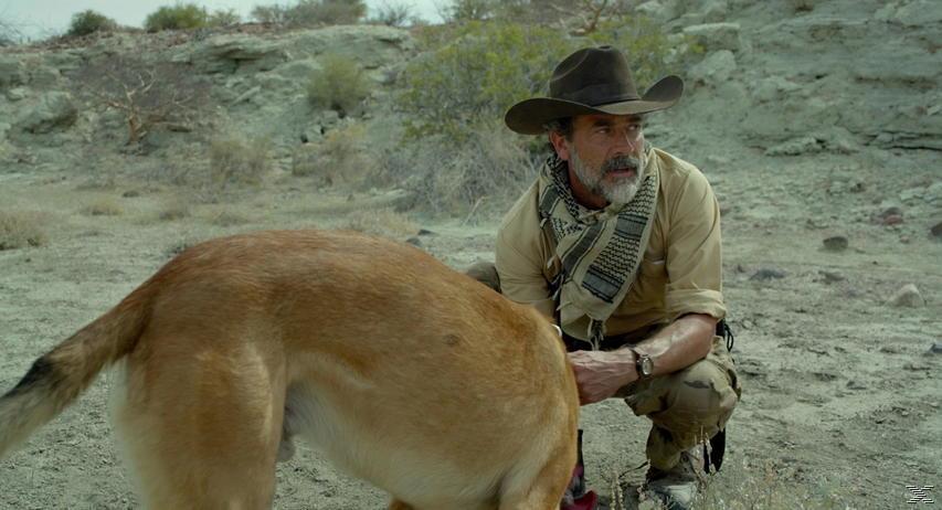 Desierto - (Blu-ray)