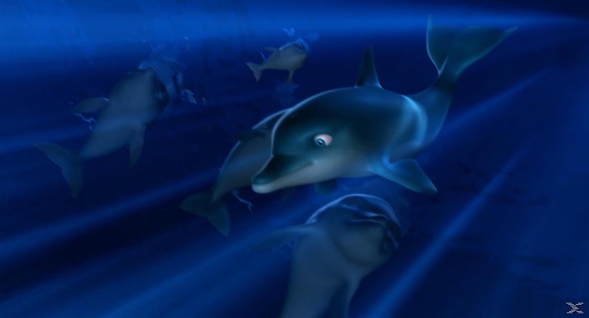 Der Delfin - (Blu-ray)