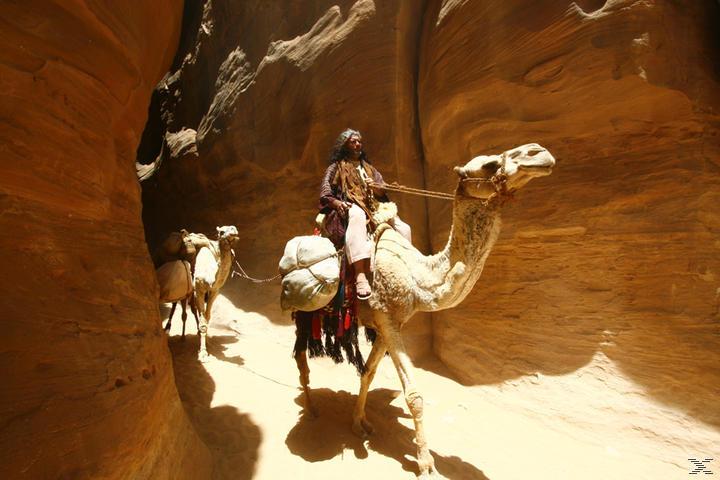 IMAX: Arabia [3D Blu-ray]