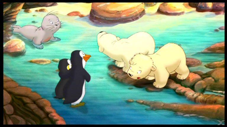 Der kleine Eisbär 2: Die geheimnisvolle Insel - (DVD)