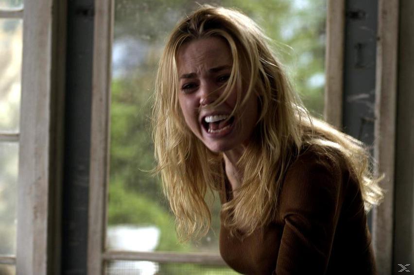 The Amityville Horror - Eine wahre Geschichte - (DVD)