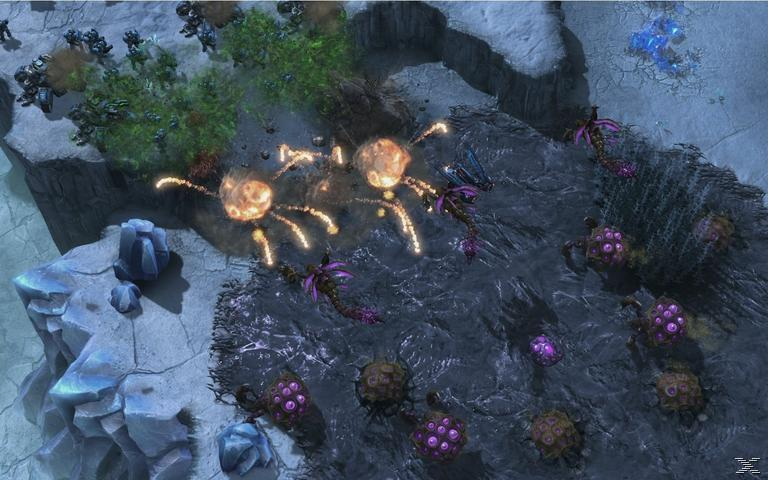 Starcraft 2: Heart of the Swarm FR Extension PC