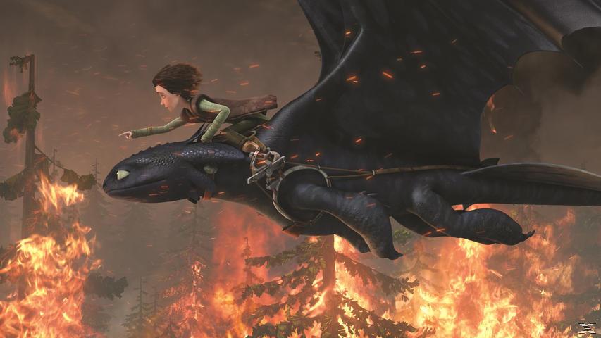 Dragons - Die Wächter von Berk 2 [DVD]